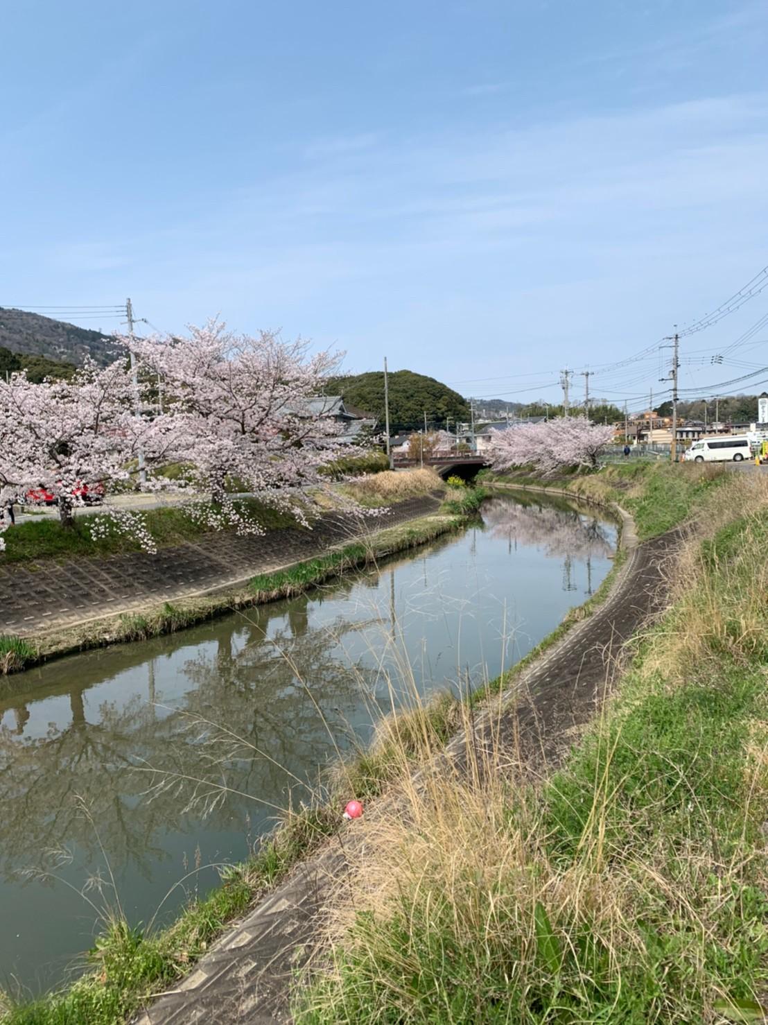 市 奈良 県 コロナ 生駒